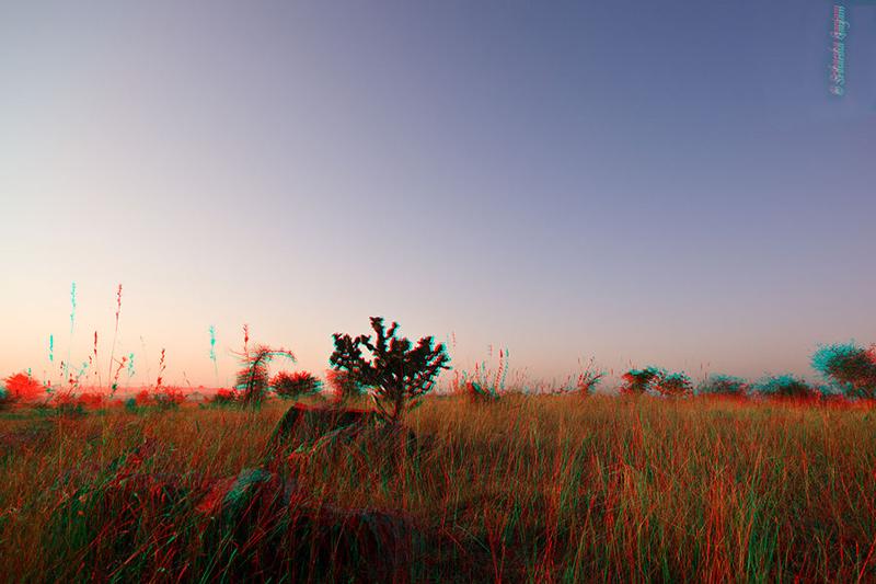Making 3D Landscapes