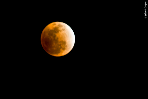 Zen Moment - Total lunar eclipse - December 2011